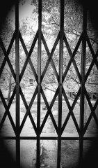 Series geométricas 1 Isabel Izquierdo Leon